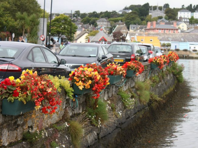 Verwey's Flowers